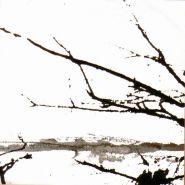 TENHI - Vare 2002