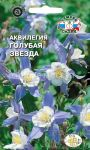 Akvilegiya-Golubaya-Zvezda-SeDek