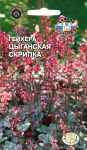 Gejhera-Cyganskaya-Skripka-SeDek