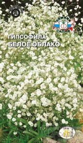 Гипсофила метельчатая Белое Облако (СеДек)