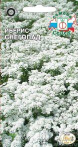 Иберис вечнозеленый Снегопад (СеДек)