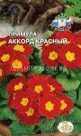 Primula-besstebelnaya-Akkord-Krasnyj-Sedek