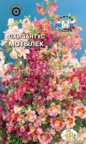 Схизантус визетонский Мотылек (Седек)
