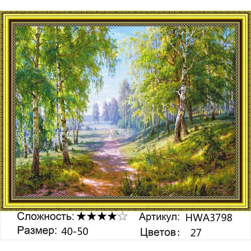 Алмазная мозаика на подрамнике HWA3798, Басов Сергей, Березовая роща