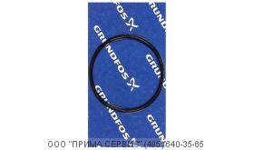 Уплотнительное кольцо Grundfos O-ring EPDM 171.04x3.53/spare - 97757659