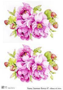 Summer flower 47