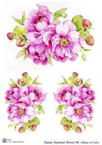 Summer flower 48