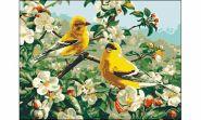 "Холст с красками ""Птицы в саду"" 30х40 см по номерам (арт. ST053)"