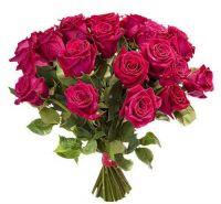 Розы Ярко-розовые 70 см (от 9 штук)