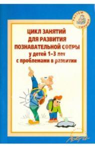 Цикл занятий для развития познавательной сферы у детей 1-3 лет с проблемами в развитии