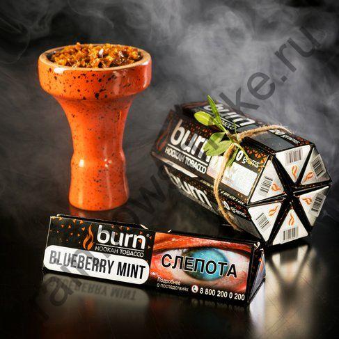 Burn 20 гр - Blueberry Mint (Черника с Мятой)