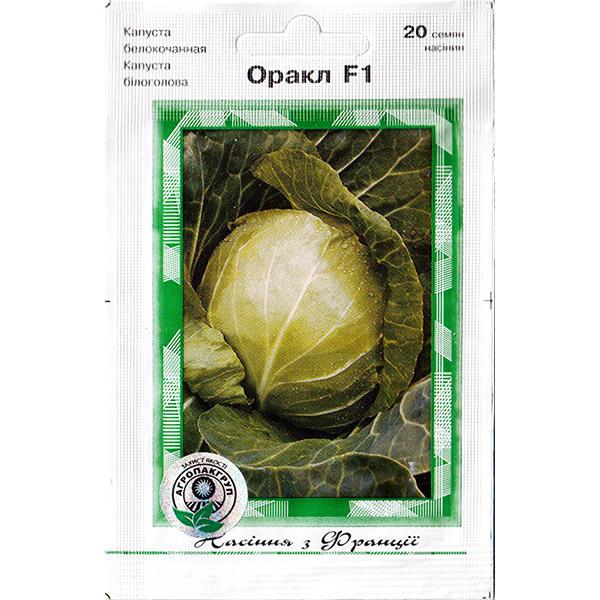 """""""Оракл"""" F1 (20 семян) от Clause"""