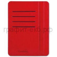 Чехол для карт Феникс+ органайзер карман на молнии 15х11см красный 45960