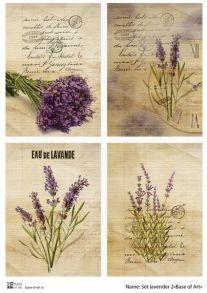 Set lavender 2