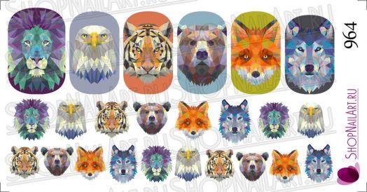 Слайдер дизайн 964 - Геометрия, животные, хищники