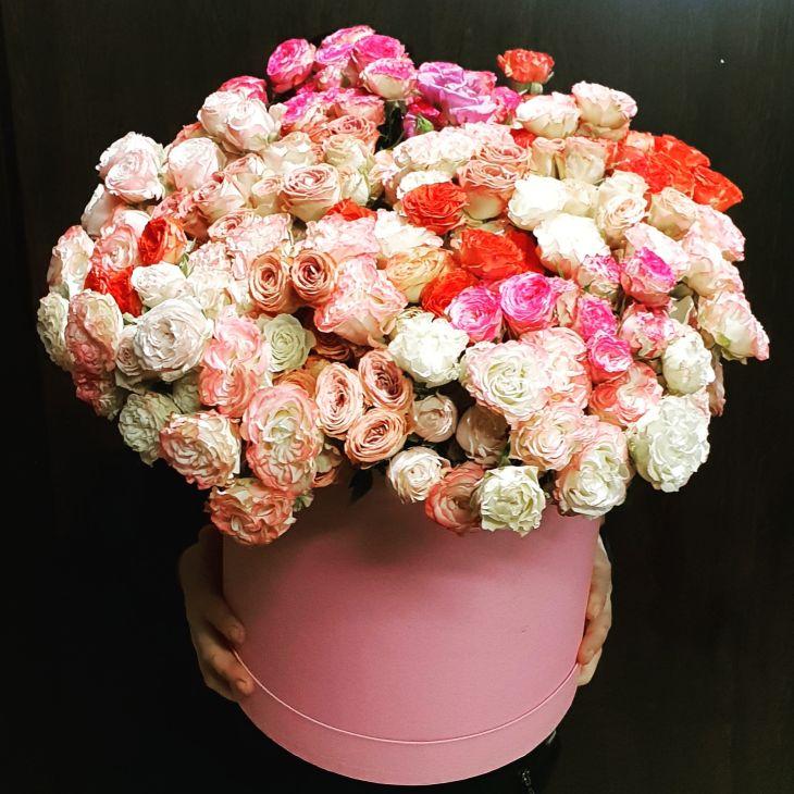 Гигант Пионовидных роз