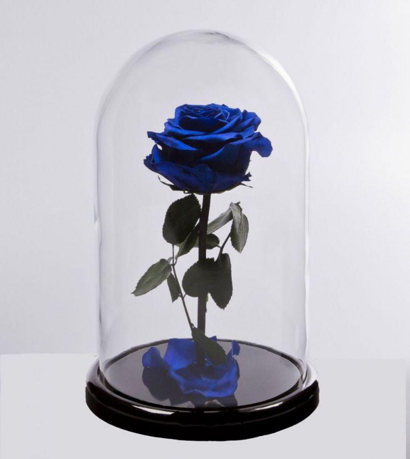 Роза в колбе Mini