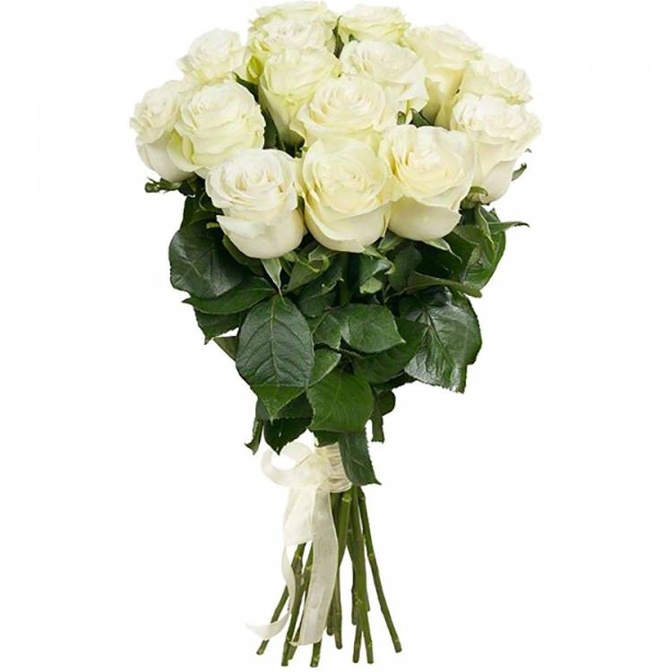 Розы белые 11 шт. 70см Эквадор