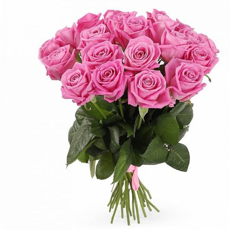 Розы розовые от 15 шт.