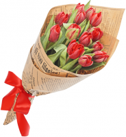 Тюльпан 15 шт (красный)